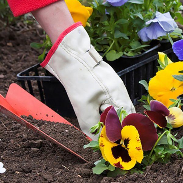 curso-jardineria