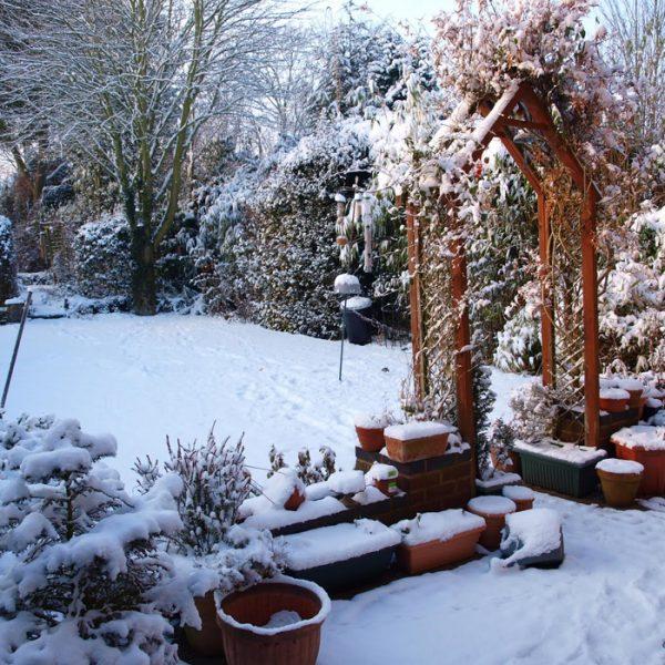 el-clima_y_el_jardin