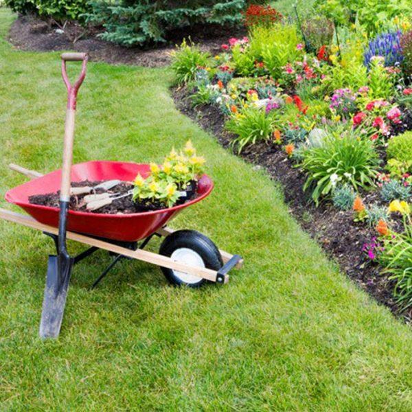 mantenimiento_de_jardines