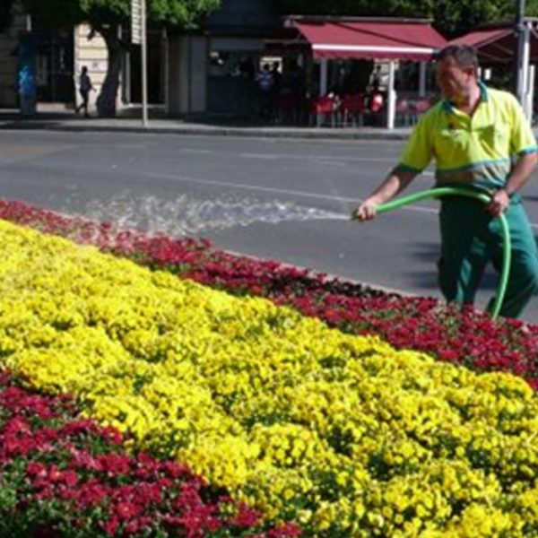 Mantenimiento de jardines jardiarte for Mantenimiento de jardines