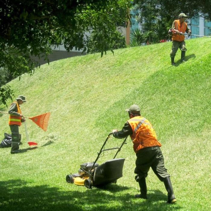 Maquinaria de jardiner a uso seguridad y mantenimiento - Imagenes de jardineria ...