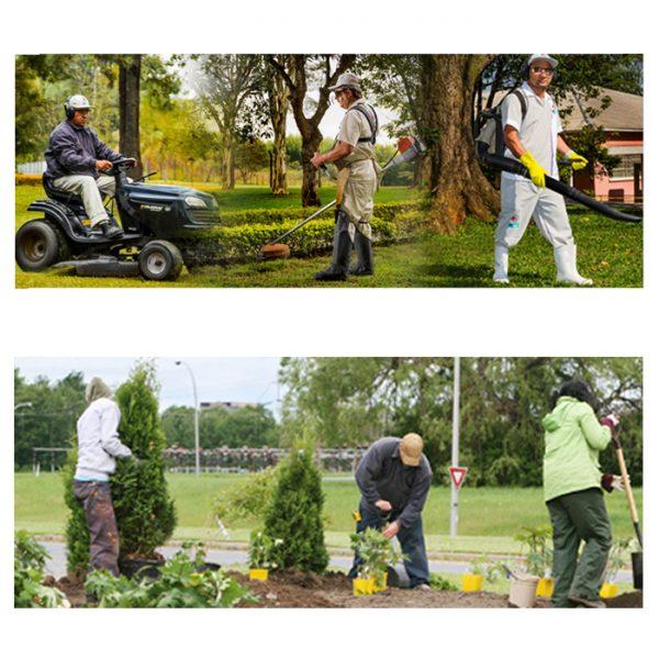 master-diseno-gestion-y-mantenimiento-de-zonas-verdes